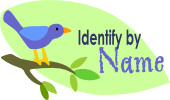 Identify by name
